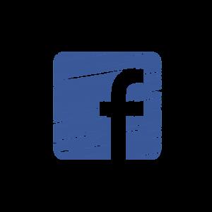 cursos online xarxes socials wordpress socialmedia